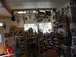 store11